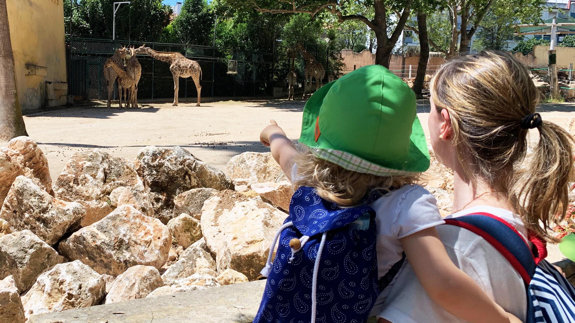 Família no Zoo